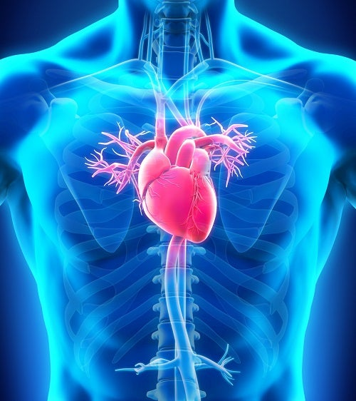 BMC a National Leader in Lowest Heart Failure Mortality Rates