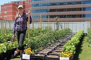 Meet Lindsay Allen, BMC's First Farmer