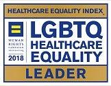 HRC healthcare equality logo