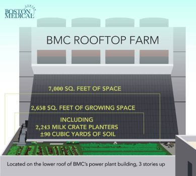 7,000 sq ft of space, 2,568 sq ft of growing space, 2,243 milk crate planters, 90+ cubic yards of soil