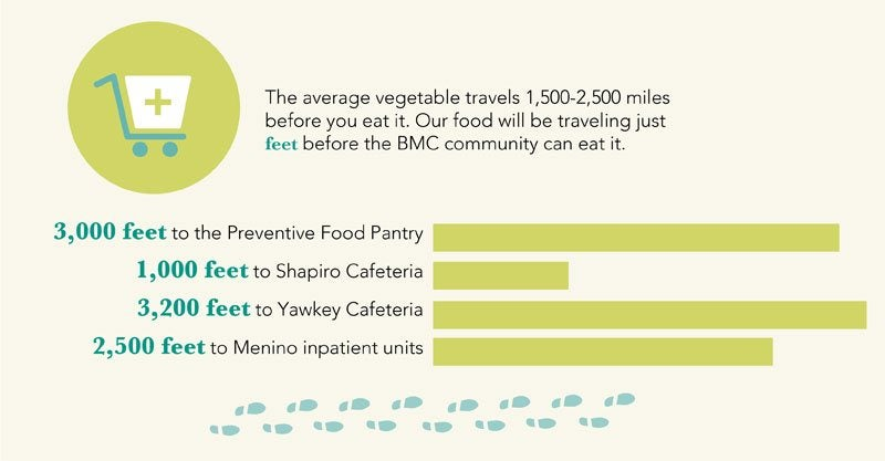The average vegetable travels 1,500-2,500 miles before you eat it. Our food will be traveling just feet before the BMC community can eat it. 3,000 feet to the Preventative Food Pantry, 1,000 feet to Shapiro Cafeteria, 3,200 feet to Yawkey Cafeteria, 2,500 feet to Menino inpatient units