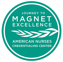 ANCC Journey to Magnet Logo