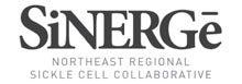 SiNERGe logo