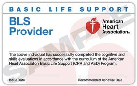 basic life support provider card