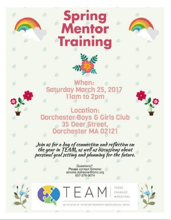 Spring Mentor Training
