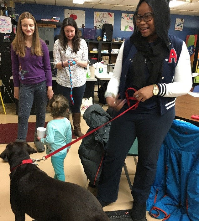 Interacting with therapy dogs.