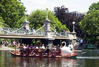 This is an image of the Swan Boats