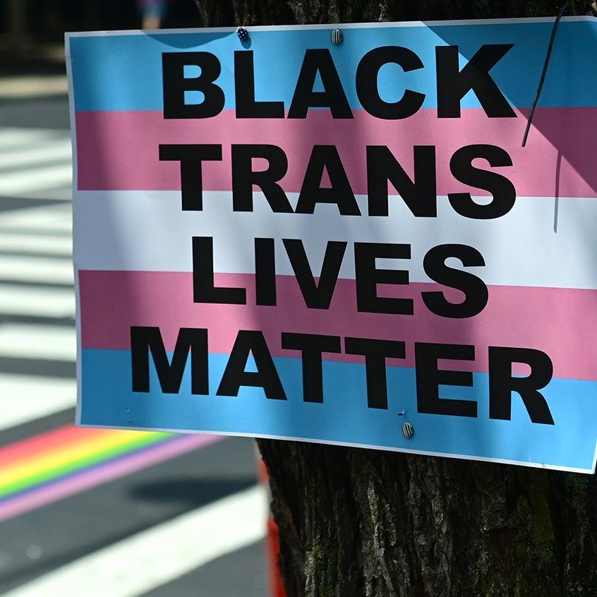 black trans lives matter trans flag sign on a tree
